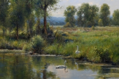 "Robert Peters ""Late Summer Swans"" 36x40 oil - private collection"