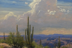 """""""Sonoran Afternoon"""" 18x20 oil - Private Collection"""