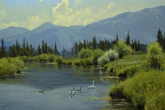"""""""Swan Valley Idyll"""" 30 x40 oil - Private Collection"""