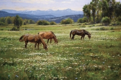 Robert Peters - Amid Summer Blooms